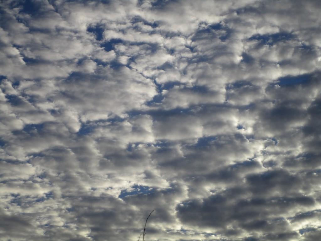 구름1.JPG