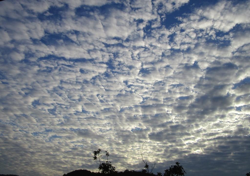 구름2.jpg