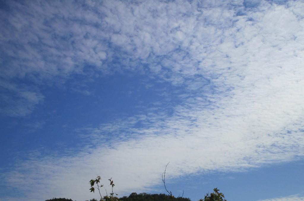 구름4.jpg