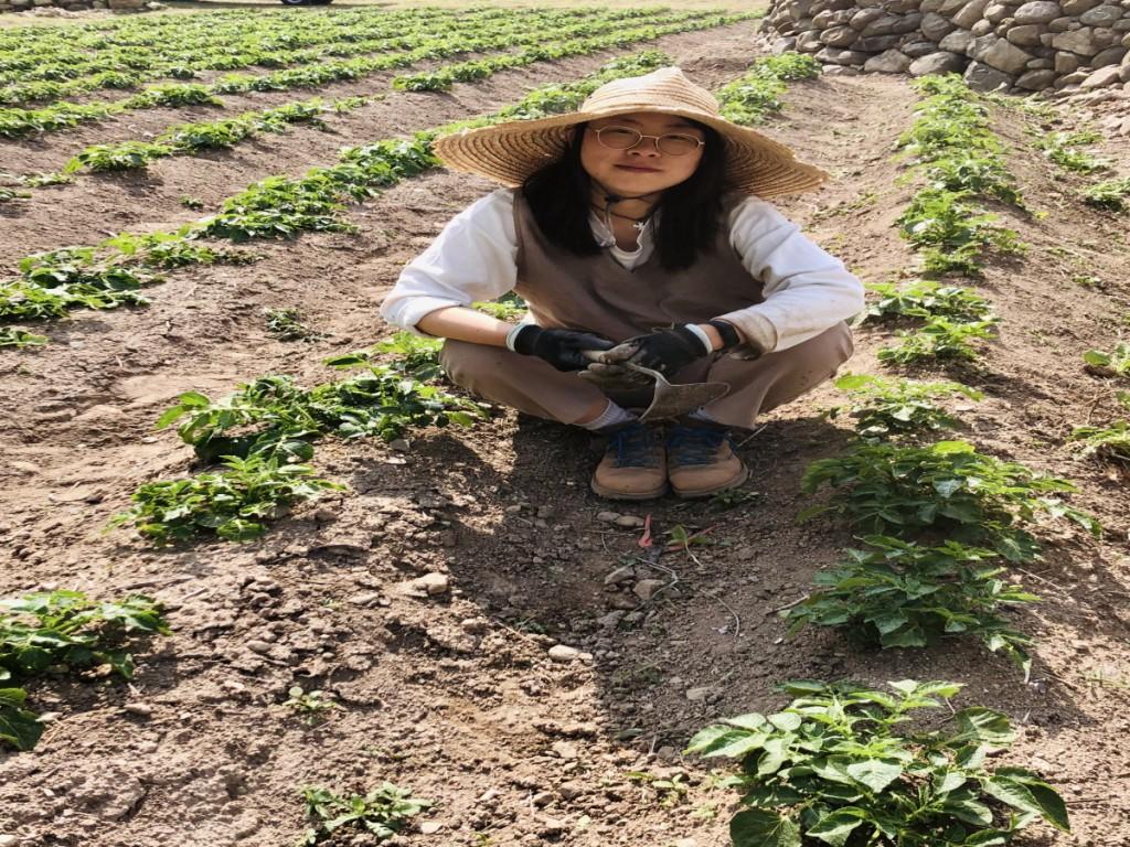 [크기변환]감자밭_12.jpg